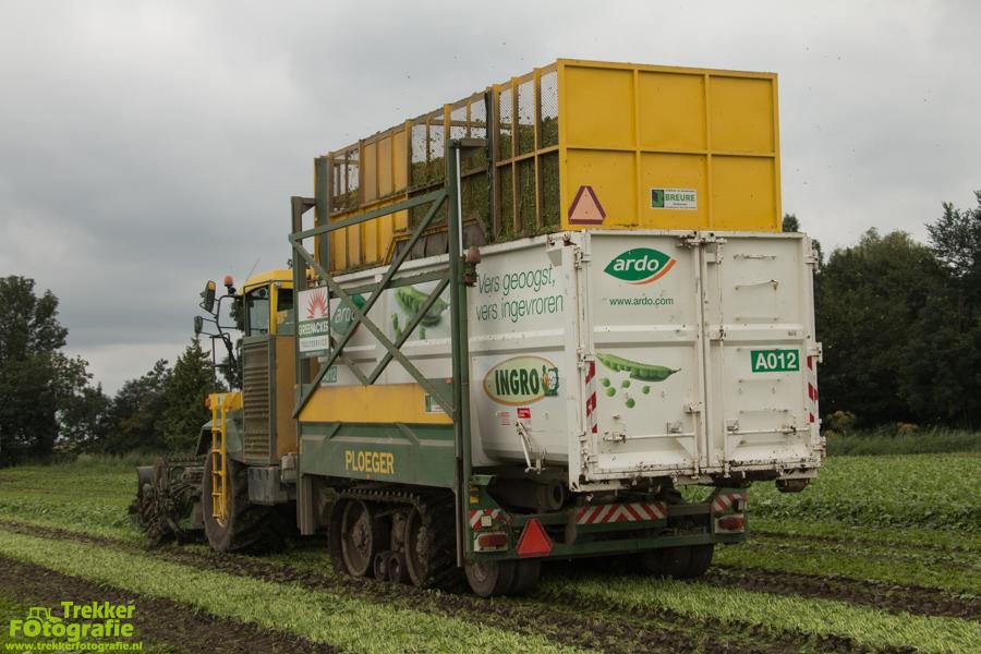 trekkerfotografie - spinazie - oogsten - breure - IMG_1492